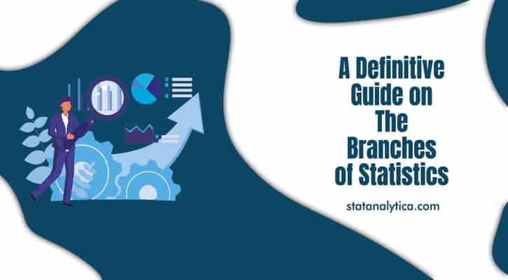 A Definitive Guide on The Branches of Statistics