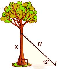 math-example